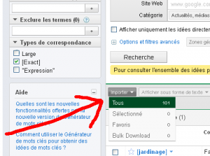 Capture d'écran importation AdWords